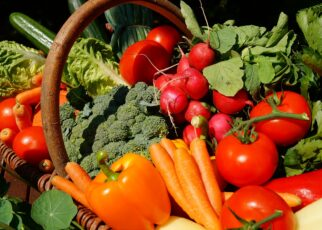 Magical Tips to Make Your Child Eat Vegetables